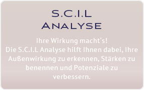 SCIL Performance Strategie